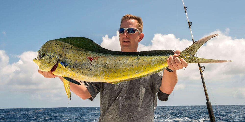 Longer Days client Holding a big Hatteras Mahi Mahi on our offshore charter boat.